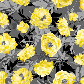 yellow peonies on gray