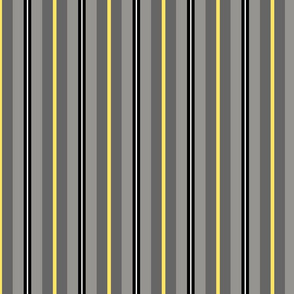 Gray and Yellow Stripes