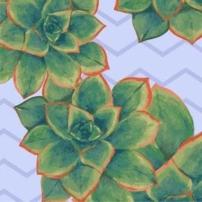 Painted Succulents - Large