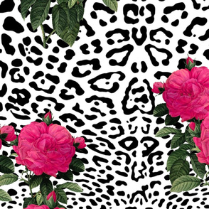 Ooh La La! Leopard with Hot Pink Redoute Roses ~ Jumbo
