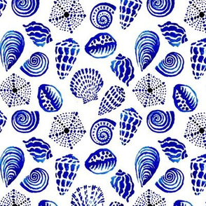 blue seashells small scale