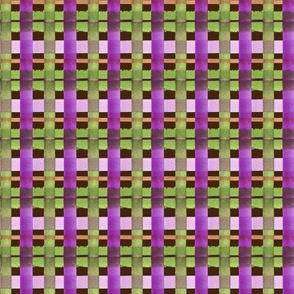 pretty in purple plaid CHOCOLATE