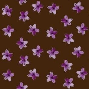 pretty in purple toss coordinate chocolate