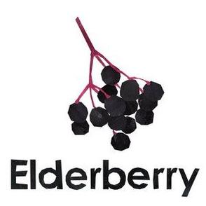 "Elderberry - 6"" panel"
