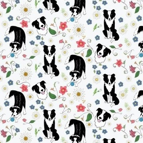 Border Collies with  Flowering Vines on White
