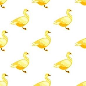 Golden Goose on White