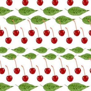 cherry stripes - white