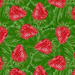 strawberries packed - dark green