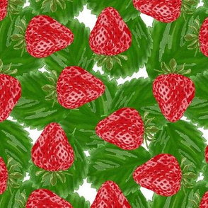 strawberries packed - white