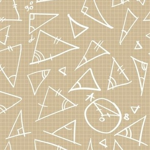 handwriting math figures triangles and circles, calculations, handwritings on the squared paper