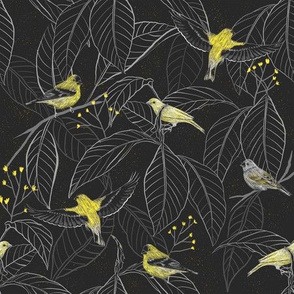 The Yellow Finch