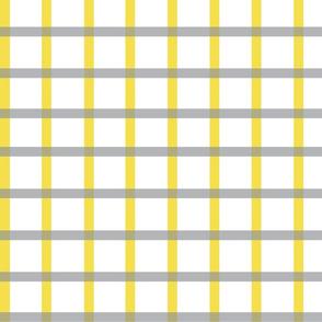 Yellow Gray Windowpane