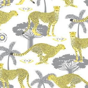 Cheetahs Yellow and Gray