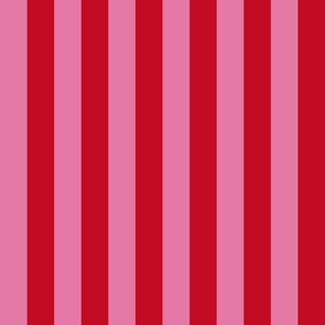Vintage Stripe Pink & Red