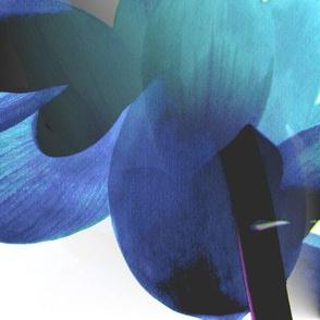 Blue Skies Lotus