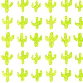 In the Cactus