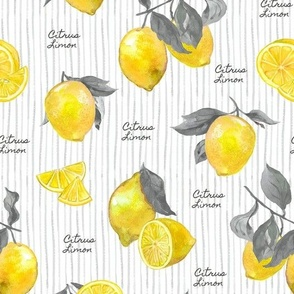 Aromatherapy Lemons Yellow-Gray
