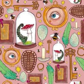 Curious Curio- Pink