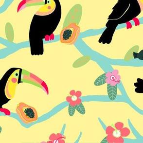 Toucans in the Papaya Tree