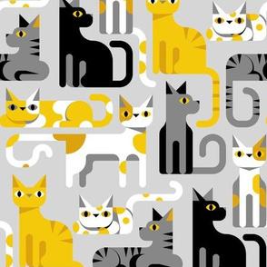 yellow gray cats