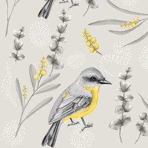 Australian Yellow Robin Botanical 2B