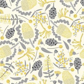 Banksia botanicals