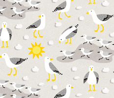 Seagulls and sandpipers