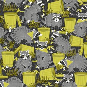 Trash Panda-emic