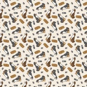 Tiny Appenzeller Sennenhund - barn hunting