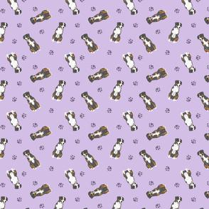 Tiny Entlebucher mountain dog - purple