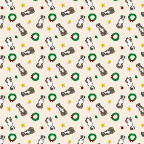 Tiny Entlebucher mountain dog - Christmas