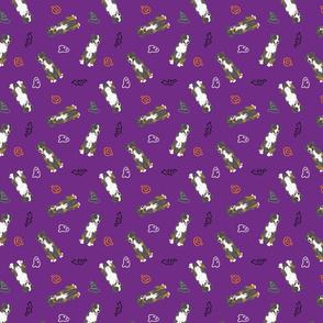Tiny Entlebucher mountain dog - Halloween