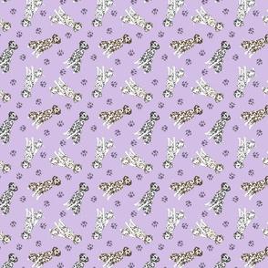 Tiny Dalmatians - purple
