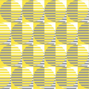 Yellow and grey disk