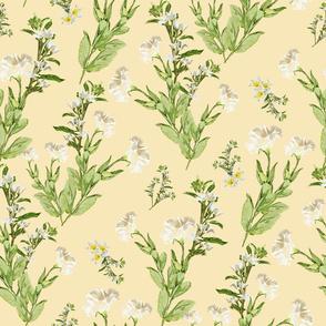 White Lisianthus (Cream)