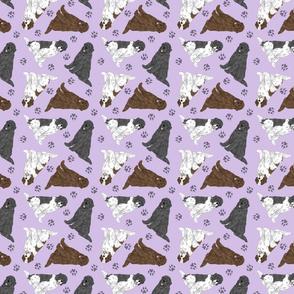 Tiny assorted Newfoundlands - purple