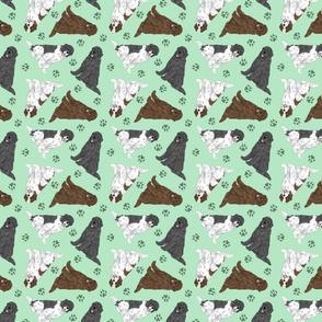 Tiny assorted Newfoundlands - green