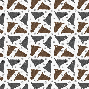 Tiny Newfoundlands - gray