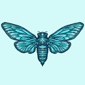 Cicadas on pale blue