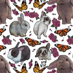 Butterflies and Bunnies