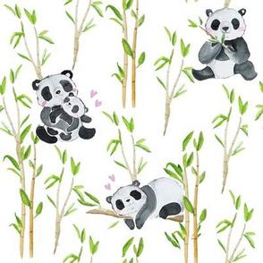 Panda love aquarelle