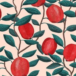 Pomegranate  - cream