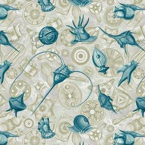 Ernst Haeckel Cerulean Peridinium over Moss Diatom