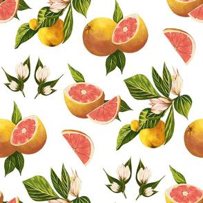 Grapefruit (White)