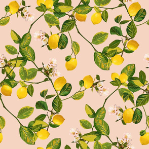 Lemon Tree (Pink)