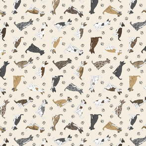 Tiny assorted Border Whippets - tan