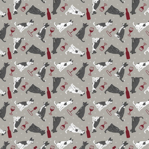 Tiny black and white Border Whippets - wine