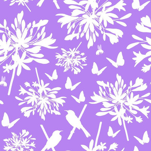 Agapanthus Enchantment (butterflies, birds + bees) - lilac, large