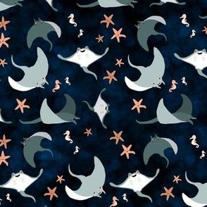 Mantas, Seahorses, and Stars