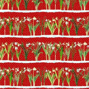 Red snowdrops border